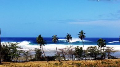 Photo of Tres Palmas – Surfing Wallpaper