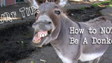 Photo of Surf Tip: How NOT To Be A Donkey
