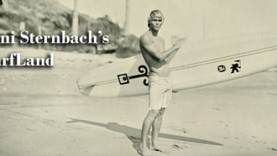 Photo of Joni Sternbach's SurfLand