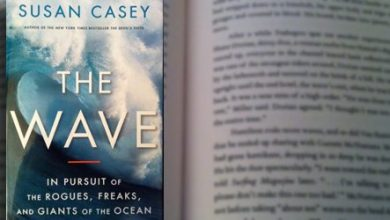 Photo of The Wave – Book Review