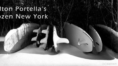 Dalton Portella's Frozen New York Surf 1